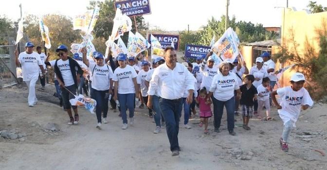 Pancho Pelayo: Campaña con Fuerza Propia