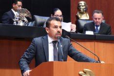 Ricardo Velázquez Meza.jpg
