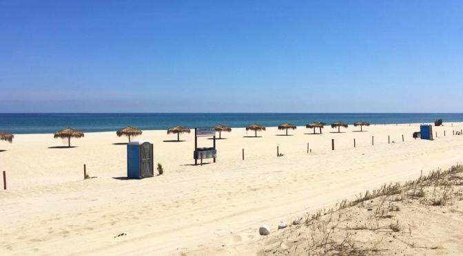 La presencia de usuarios de playa ha disminuido notoriamente: ZOFEMAT